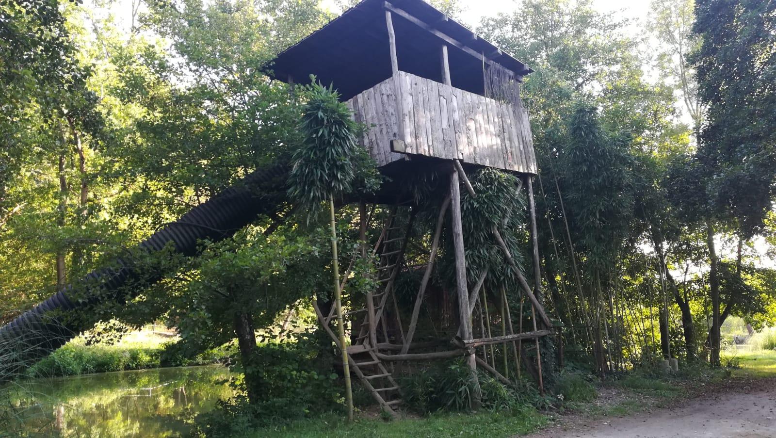 toboggan cabane